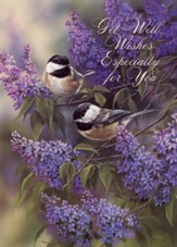 Garden Songs/Birds/Get Well Cards, Box of 12