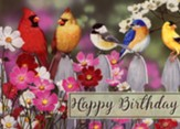 Birds Birthday Cards, Box of 12