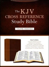 The KJV Cross Reference Study Bible - Imitation Leather, indexed (masculine)