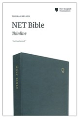 NET Comfort Print Thinline Bible--soft leather-look, teal