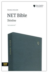 NET Comfort Print Thinline Bible--soft leather-look, teal (indexed)