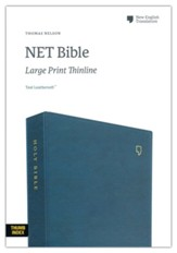 NET Large-Print Thinline Bible--soft leather-look, teal (indexed)