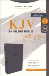 KJV, Thinline Bible Youth Edition, Leathersoft, Gray, Comfort Print