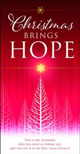 Christmas Brings Hope (1 John 5:11, NIV) Offering Envelopes, 100