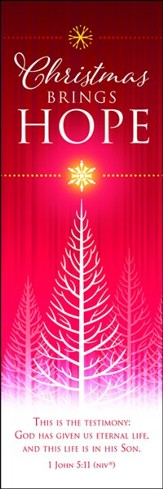 Christmas Brings Hope (1 John 5:11, NIV) Bookmarks, 25