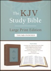 KJV Study Bible - Large Print -  Indexed [Teal Inlay]