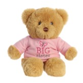 Big Sister T-Shirt Teddy Bear
