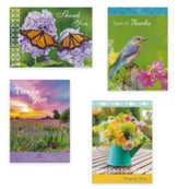 Bright Spots Assorted Thank You Cards, Box of 12