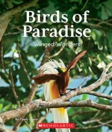 Birds of Paradise: Winged Wonders