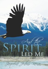 And the Spirit Led Me: Walking with God through a Church Disaster - eBook