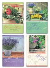Botanical Charm, Get Well Cards, Box of 12
