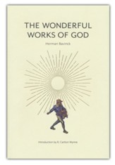 The Wonderful Works of God: Instructions in the Christian Religion According to the Reformed Confession