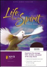 KJV Life in the Spirit Study Bible, Bonded Leather, Burgundy (Previously titled The Full Life Study Bible)