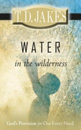 Water in the Wilderness: God's Provision for our Every Need - eBook