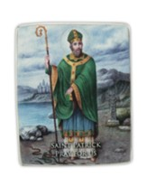 Saint Patrick Pray For Us Mini Plaque