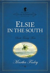 Elsie in the South - eBook