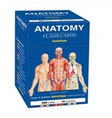 Anatomy Flash Cards (300 Cards)