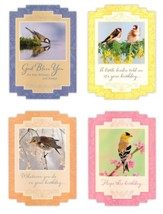 Marvelous Works, Birthday Cards, Box of 12