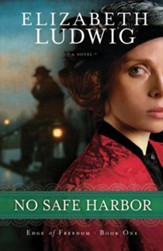 No Safe Harbor - eBook