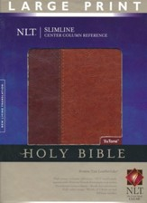 NLT Slimline Reference Bible, Large Print TuTone Leatherlike Brown/Tan