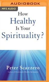 How Healthy is Your Spirituality?: Why Some Christians Make Louse Human Beings unabridged audiobook on MP3-CD
