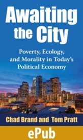 Awaiting the City: Poverty, Ecology, and Morality in Today's Political Economy - eBook