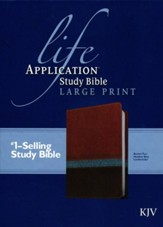 KJV Life Application Study Bible 2nd Edition, Large Print  Imitation Leather, brown/tan/heather blue