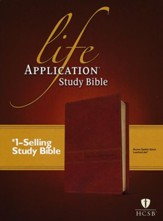 Life Application Study Bible 2nd Edition, HCSB (Brown)  -  Slightly Imperfect