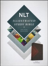 NLT Illustrated Study Bible--soft leather-look, brown/tan