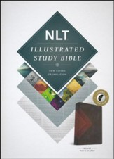 NLT Illustrated Study Bible--soft leather-look, brown/tan (indexed)