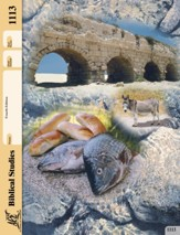 Old Testament Survey Self-Pac 1113, Grade 9-12 (4th Edition)