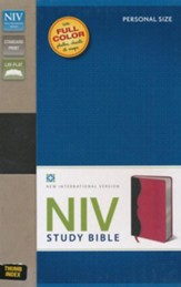 NIV Study Bible--soft leather-look, charcoal/pink, personal  size, thumb indexed