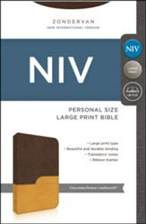 NIV Bible: Large Print (Chocolate/Amber, Italian Duo-Tone) - Slightly Imperfect