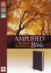 Amplified Cross-Reference Bible, Burgundy