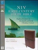 NIV First-Century Study Bible, Brown