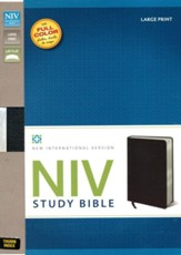 NIV Study Bible, Large Print, Bonded Leather Black, Thumb-Indexed  - Imperfectly Imprinted Bibles