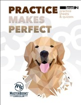 Practice Makes Perfect: Level 2 Practice Sheets & Quizzes