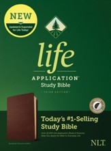 NLT Life Application Study Bible,  Third Edition--Value  Edition, Burgundy Genuine Leather (thumb indexed)