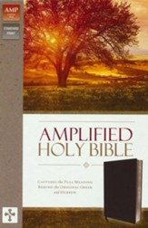 Amplified Thinline Holy Bible--bonded leather, black (indexed)