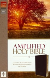 Amplified Holy Bible--bonded leather, burgundy (indexed)
