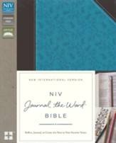 NIV Journal the Word Bible--soft leather-look, chocolate/turquoise - Slightly Imperfect
