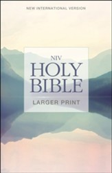 NIV Larger Print Holy Bible--softcover, lakeside, Case of 24