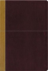 KJV and Amplified Parallel Bible, Large Print, Leathersoft, Camel/rich red  - Imperfectly Imprinted Bibles