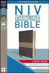 NIV Thinline Bible Large Print Brown and Tan, Imitation Leather - Imperfectly Imprinted Bibles