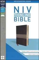 NIV Thinline Bible Brown Imitation Leather