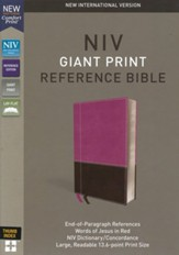NIV Comfort Print Reference Bible,  Giant Print, Imitation Leather, Pink and Brown, Indexed