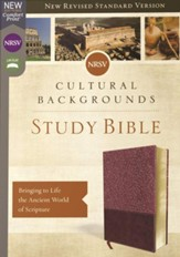 NRSV, Cultural Backgrounds Study Bible, Leathersoft, Burgundy, Comfort Print