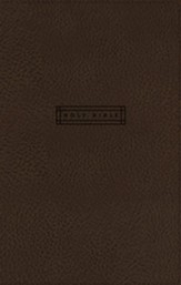 NRSV Simple Faith Bible, Comfort  Print--soft leather-look, brown