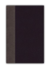 NIV Giant-Print Compact Bible, Comfort Print--soft leather-look, black (red letter)