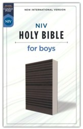 NIV Holy Bible for Boys--soft leather-look, gray